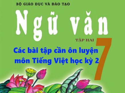 Các bài tập cần ôn luyện môn Tiếng Việt học kỳ 2 lớp 7