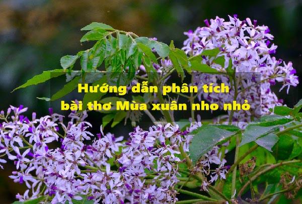 Hướng dẫn phân tích bài thơ Mùa xuân nho nhỏ